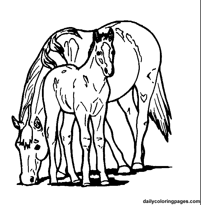 equestrian coloring pages 13,printable,coloring pages