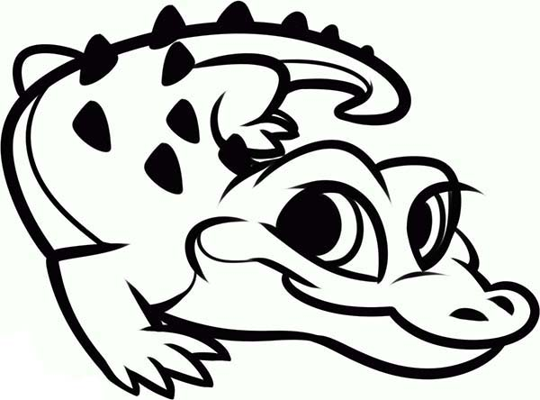 alligator coloring pages 27 pictures crafts and cliparts print rh printcolorcraft com alligator coloring pages to - Alligator Coloring Page