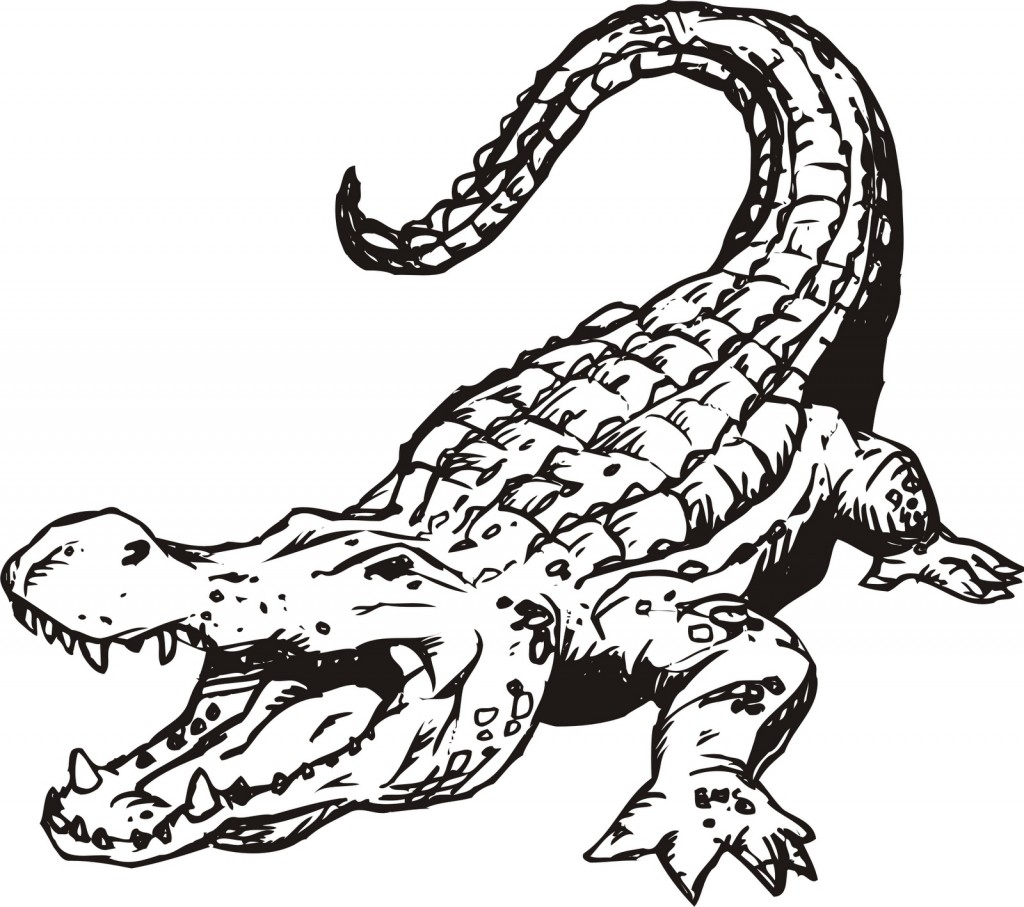 kids coloring pages alligator,printable,coloring pages