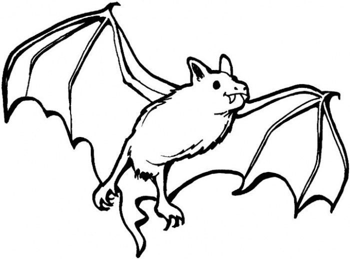 bat coloring page to print,printable,coloring pages