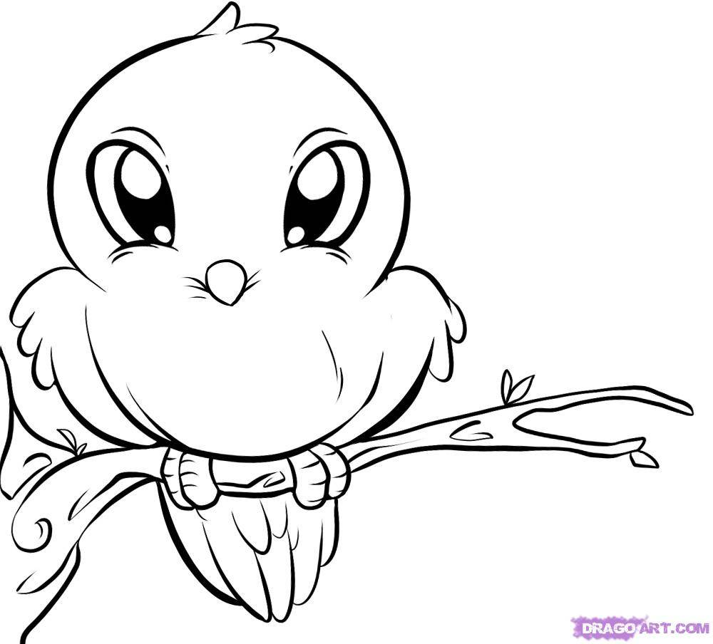 39 bird coloring pages printable print color craft for Bird coloring pages to print