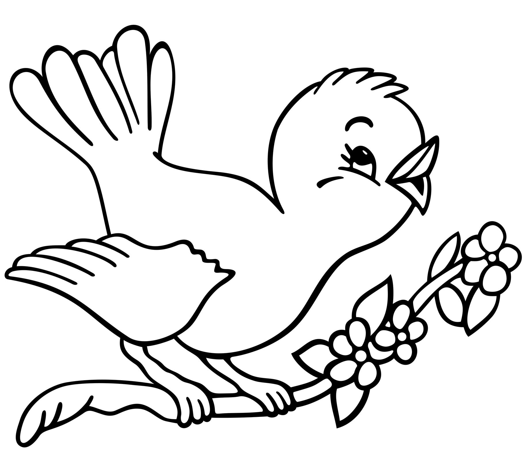 bird coloring pagesprintablecoloring pages