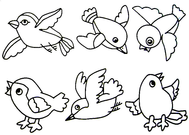 bird coloring pages 12,printable,coloring pages