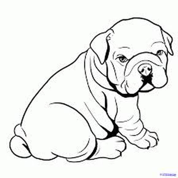 12 Coloring Pages Of Bulldog Print Color Craft