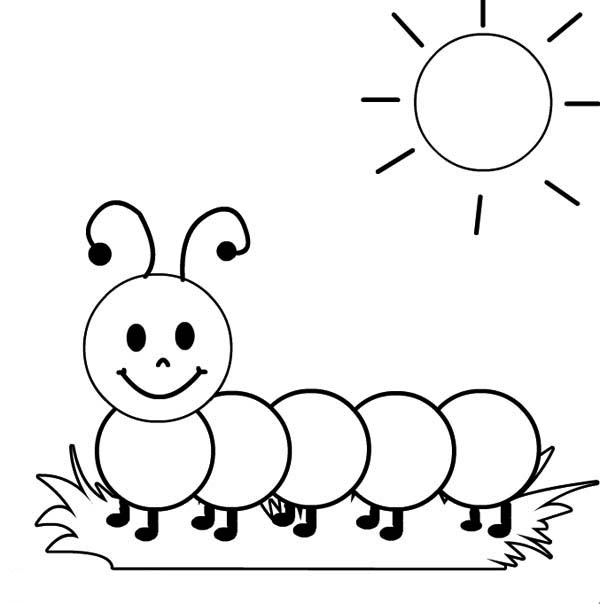 Metamorphosis 20 caterpillar coloring pages and pictures for Very hungry caterpillar templates free