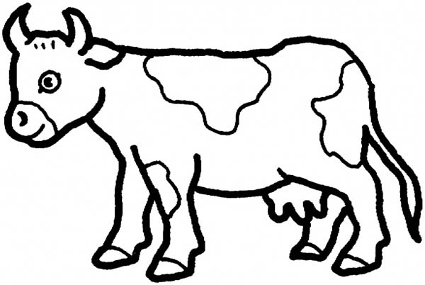 cow coloring page to print,printable,coloring pages