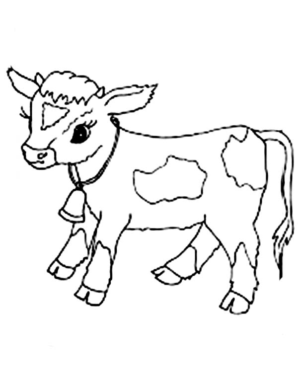 29 cow coloring pages for kids print color craft