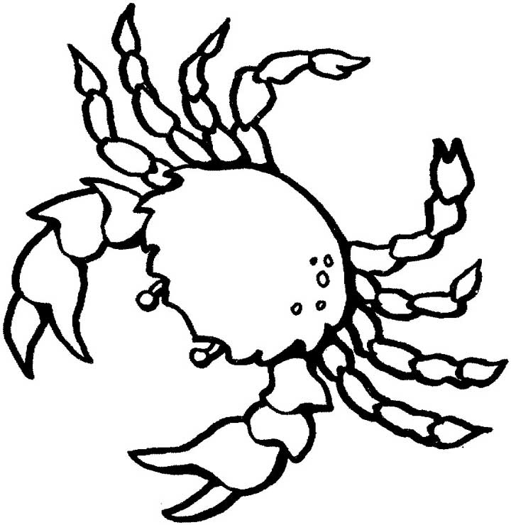 crab coloring page,printable,coloring pages