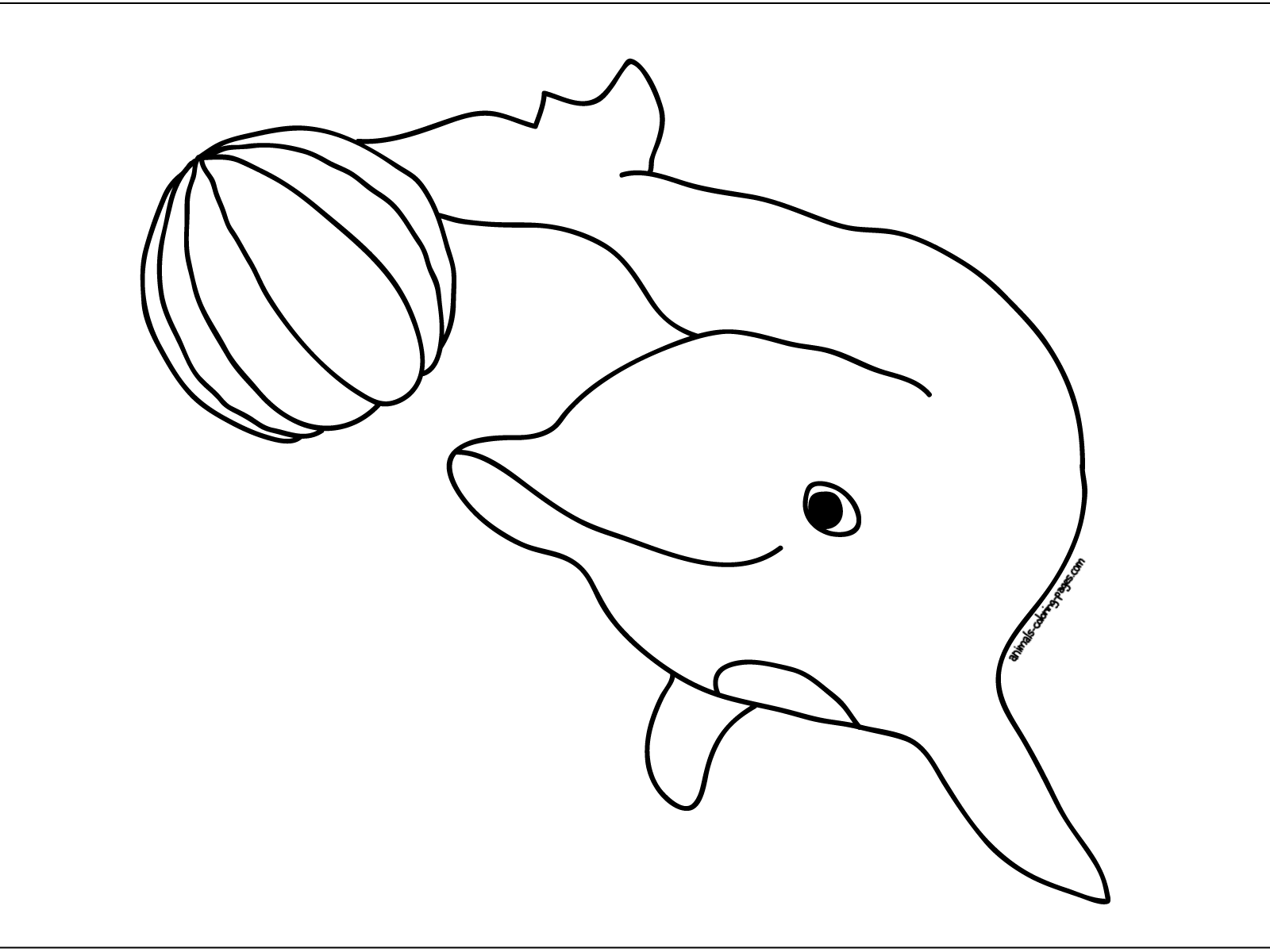 kids coloring pages dolphin,printable,coloring pages