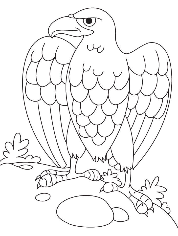 eagle coloring pages for kids - photo #49
