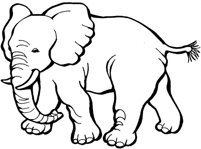 28 elephant coloring page