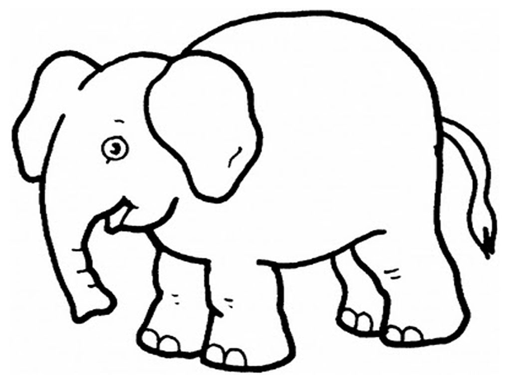 printable elephant coloring pages,printable,coloring pages
