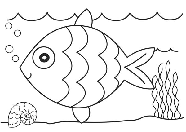 coloring pages of fish,printable,coloring pages
