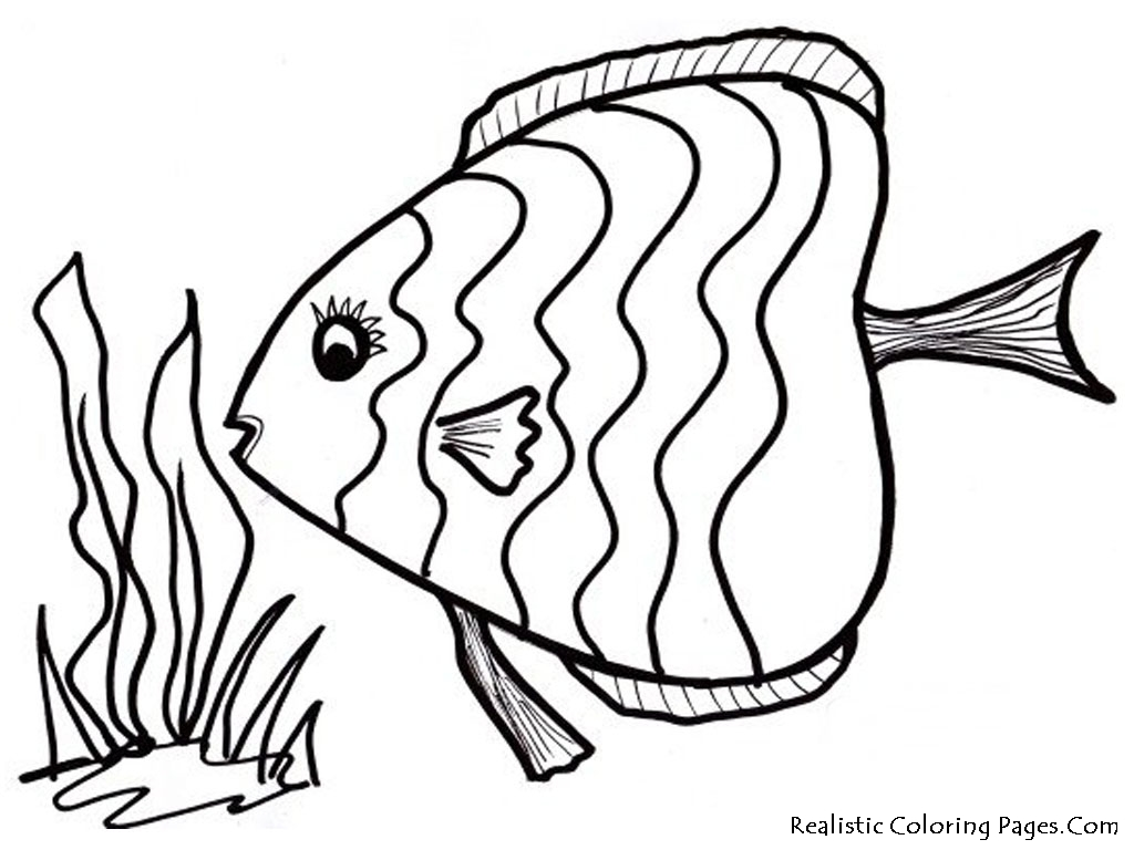 fish coloring pages print color craft