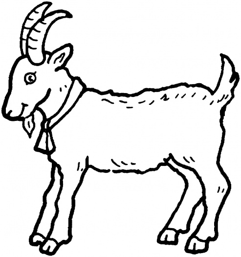 coloring pictures goat,printable,coloring pages