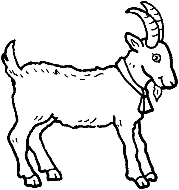 printable pictures of goat page,printable,coloring pages