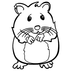 hamster coloring pages,printable,coloring pages