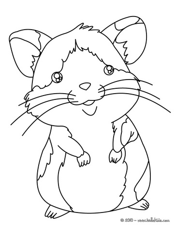 kids coloring pages hamster,printable,coloring pages
