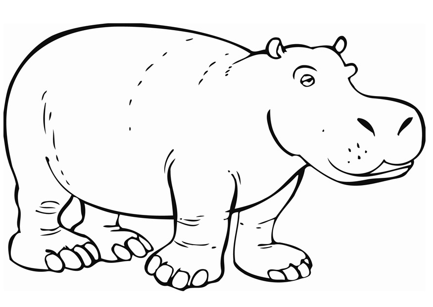 coloring pages of hippo,printable,coloring pages