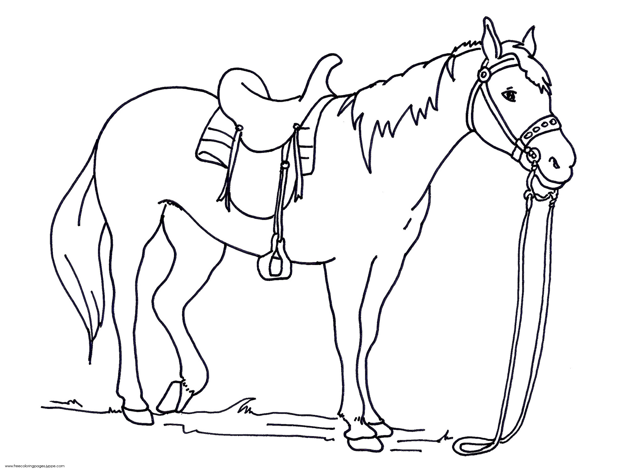 42 horse coloring pages - Print Color Craft