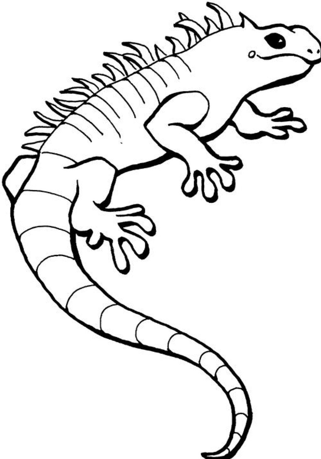 iguana coloring page to print,printable,coloring pages