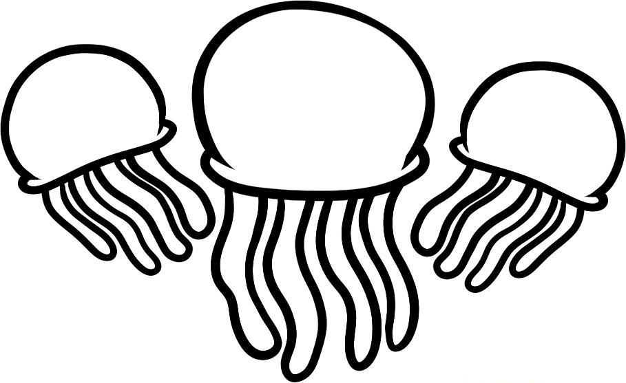jellyfish coloring page,printable,coloring pages