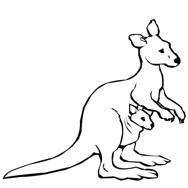 kangaroo coloring page,printable,coloring pages