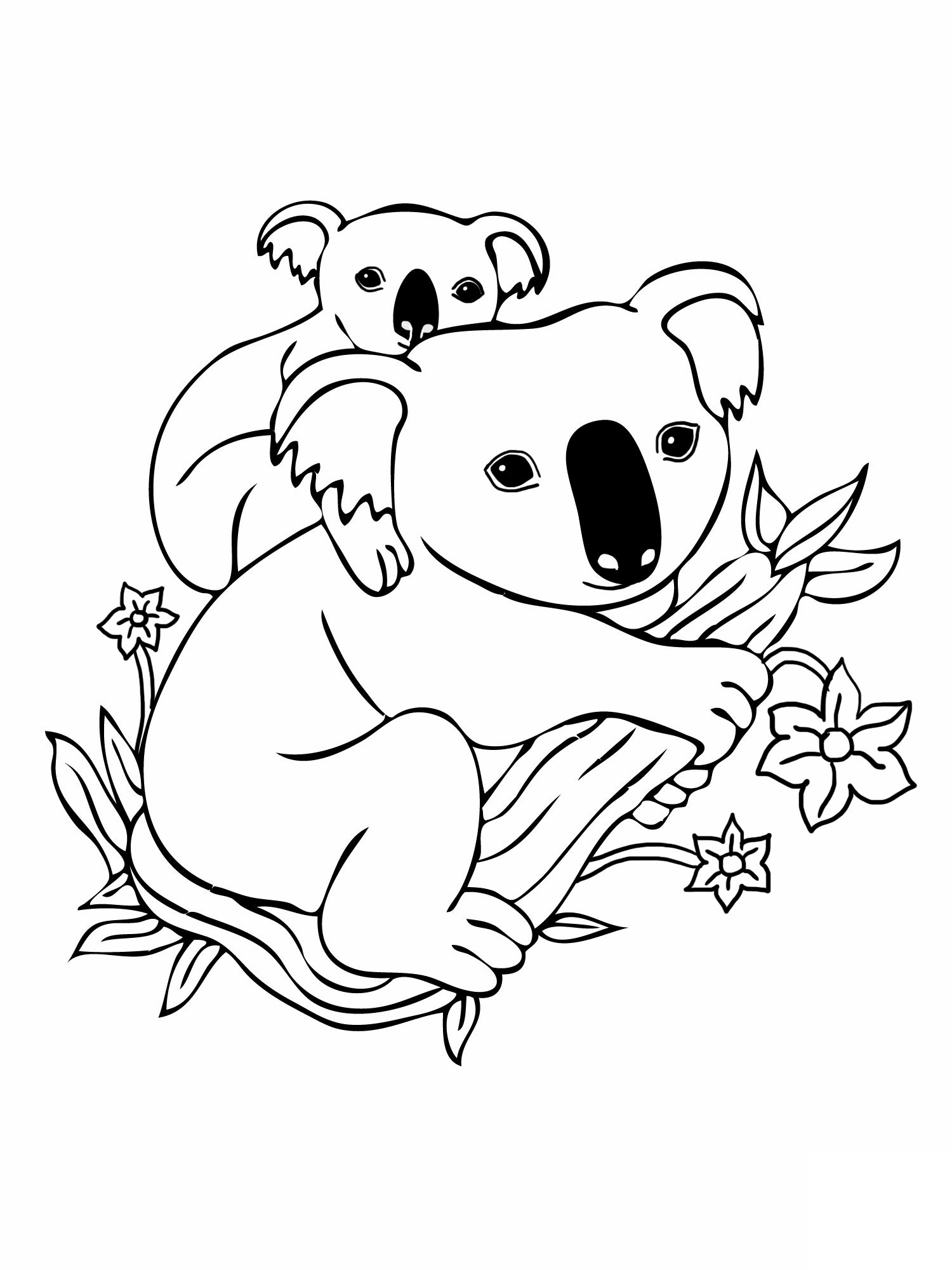 coloring pages of koala,printable,coloring pages