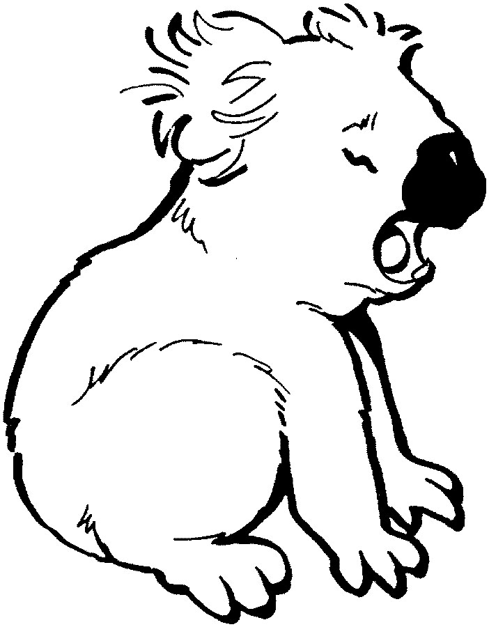 koala coloring pages 14,printable,coloring pages