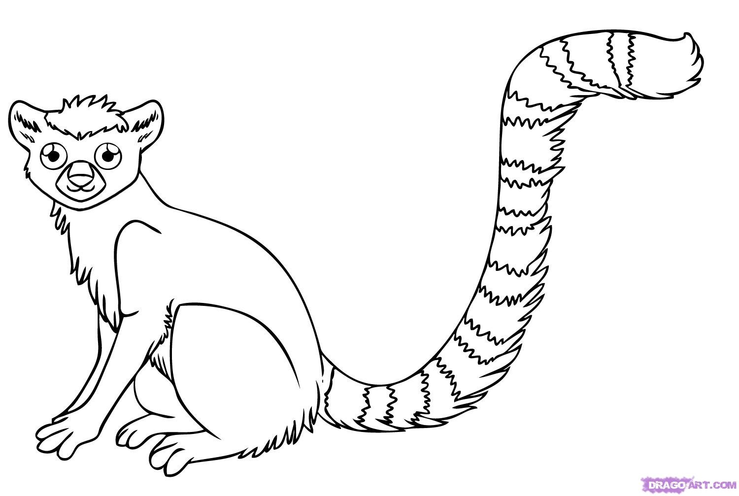 Lemur Coloring Print Color Craft