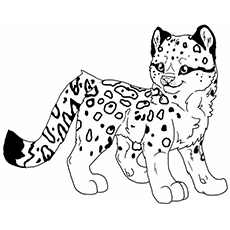leopard coloring page,printable,coloring pages