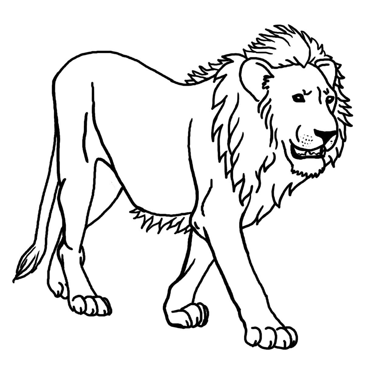 lion coloring page,printable,coloring pages