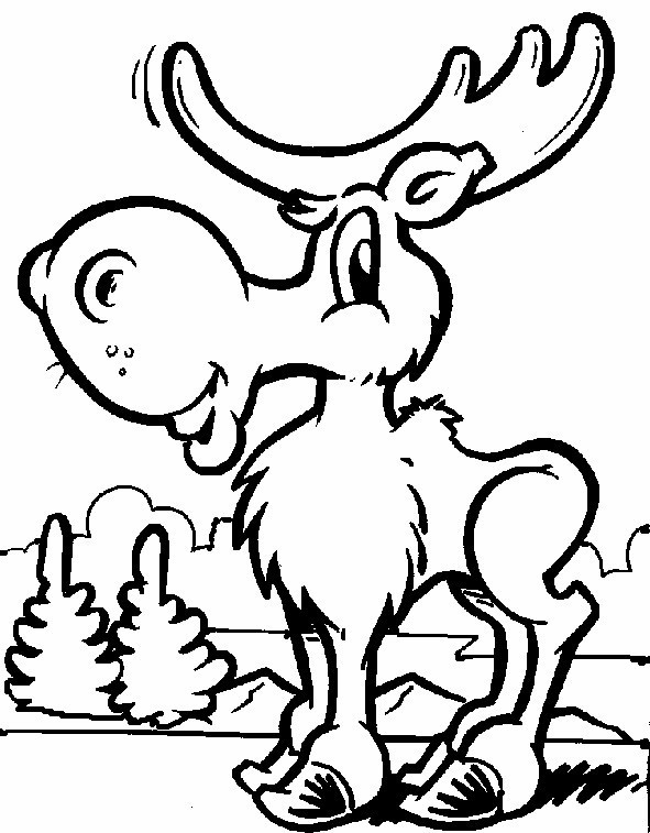 moose coloring pages printable,printable,coloring pages
