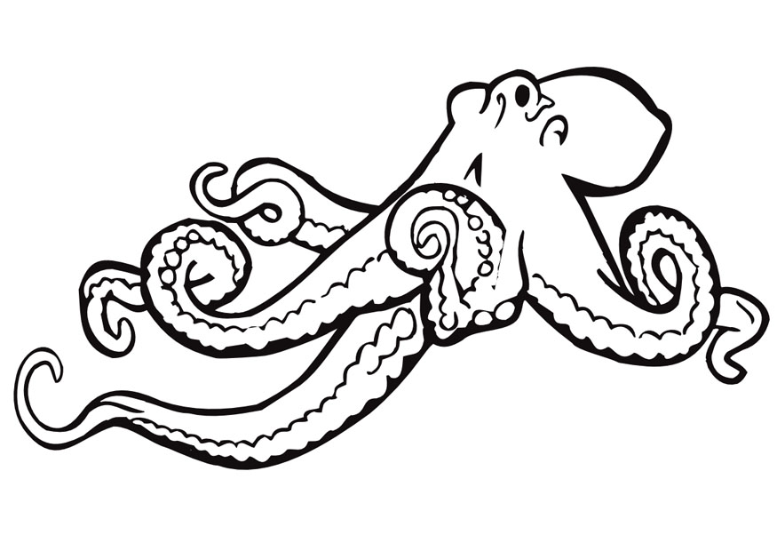 kids coloring pages octopus,printable,coloring pages