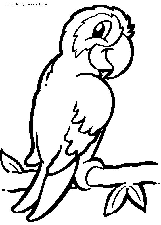 parrot coloring page to printprintablecoloring pages