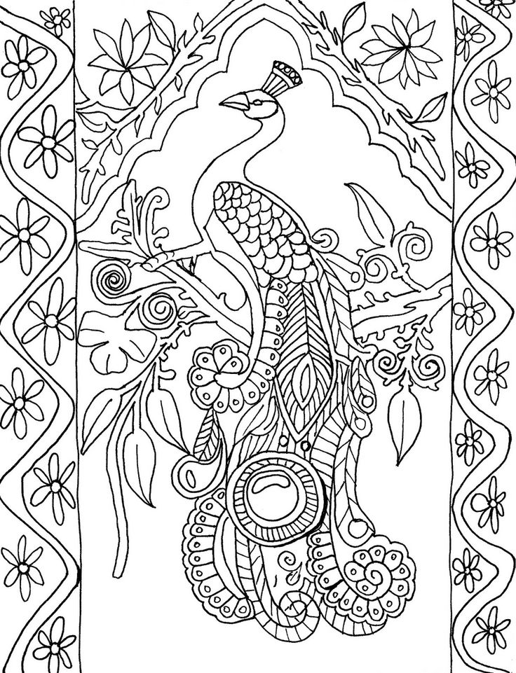 coloring page peacock beautiful peacock coloring pages for girls print color craft