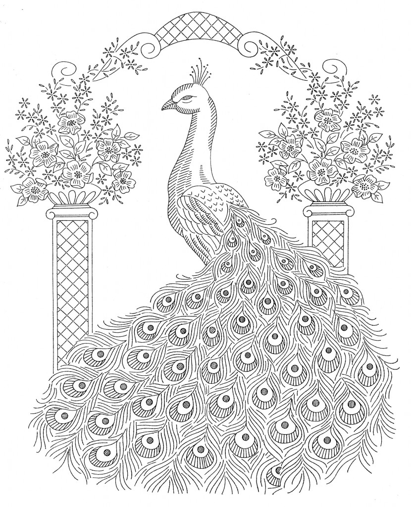 peacock coloring page to print,printable,coloring pages
