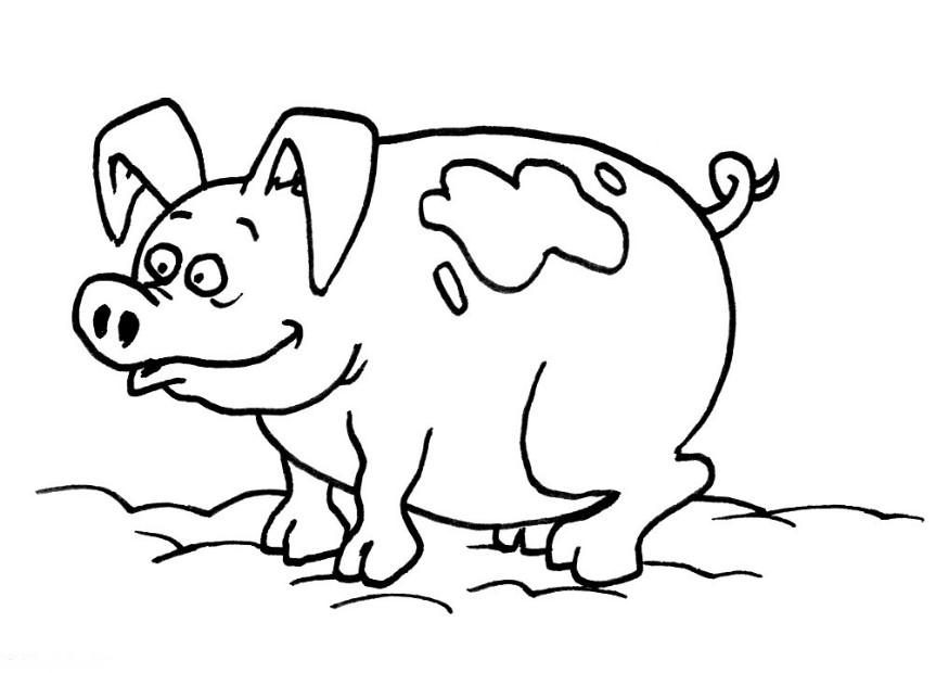 pig coloring pages printable,printable,coloring pages
