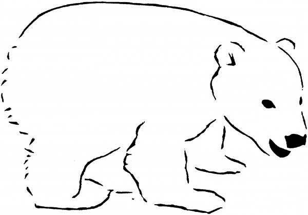 Cartoons print color craft part 2 for Polar bear coloring pages