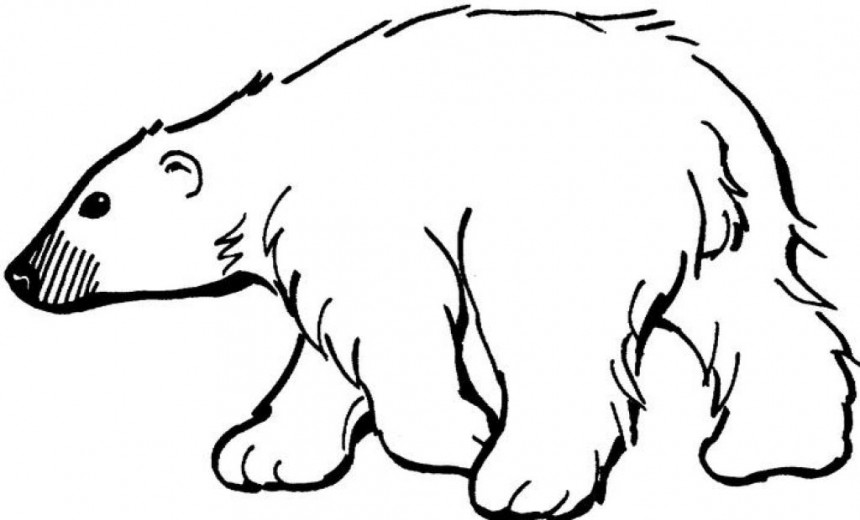 Hunting coloring pages print color craft for Coloring pages polar bear