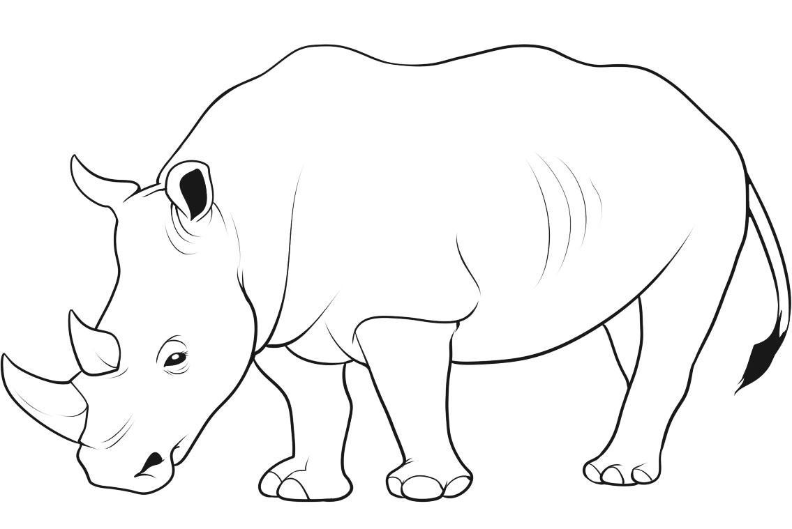 White Rhino Coloring Pages