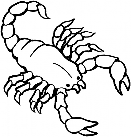 scorpion coloring pages 14,printable,coloring pages