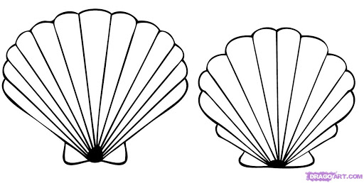 Free Printable Seashell Coloring Pages For Kids | Beach coloring ... | 258x512