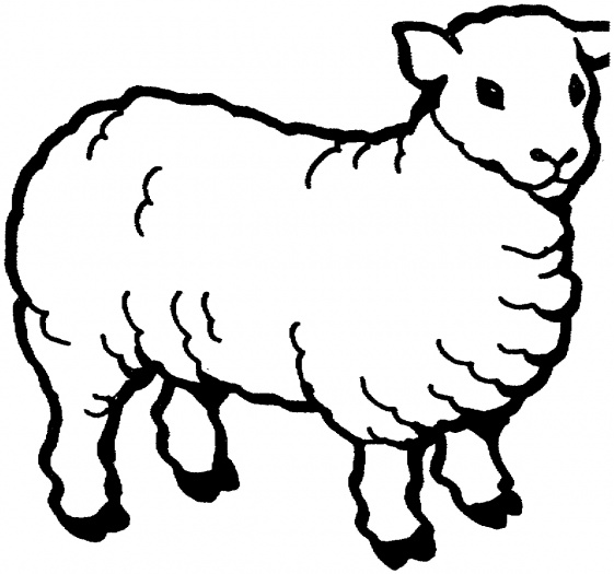 coloring pictures sheep,printable,coloring pages
