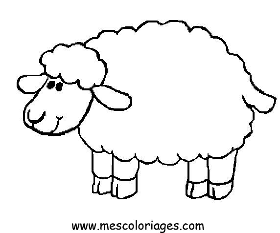 sheep coloring pages,printable,coloring pages