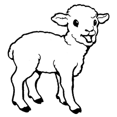 sheep coloring pages 13,printable,coloring pages