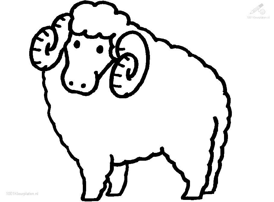 sheep coloring pages 14,printable,coloring pages