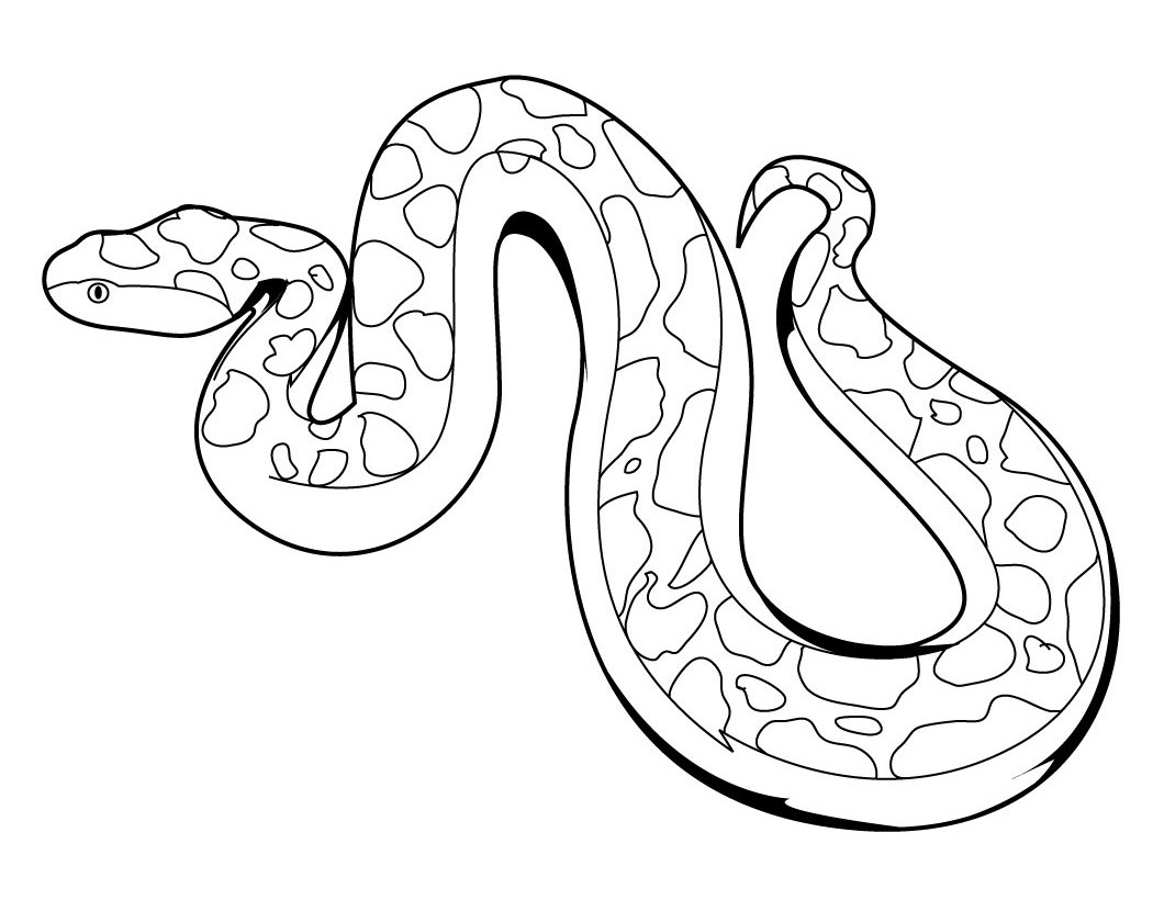 snake coloring pages,printable,coloring pages