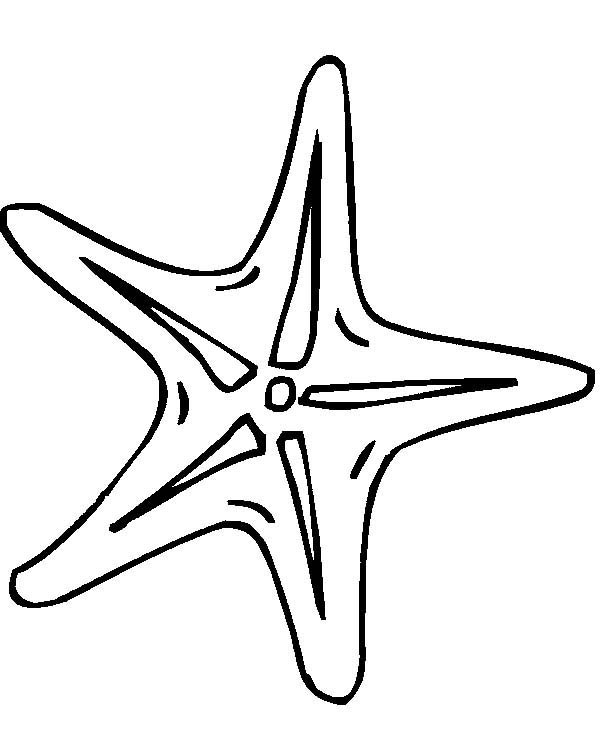 Small Starfish Coloring Pages | Coloring Page