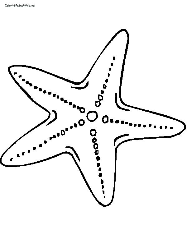 starfish coloring pages,printable,coloring pages